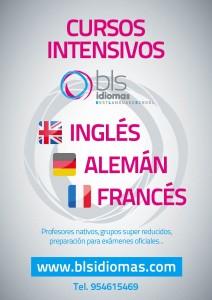 cursos intensivos ingles aleman frances
